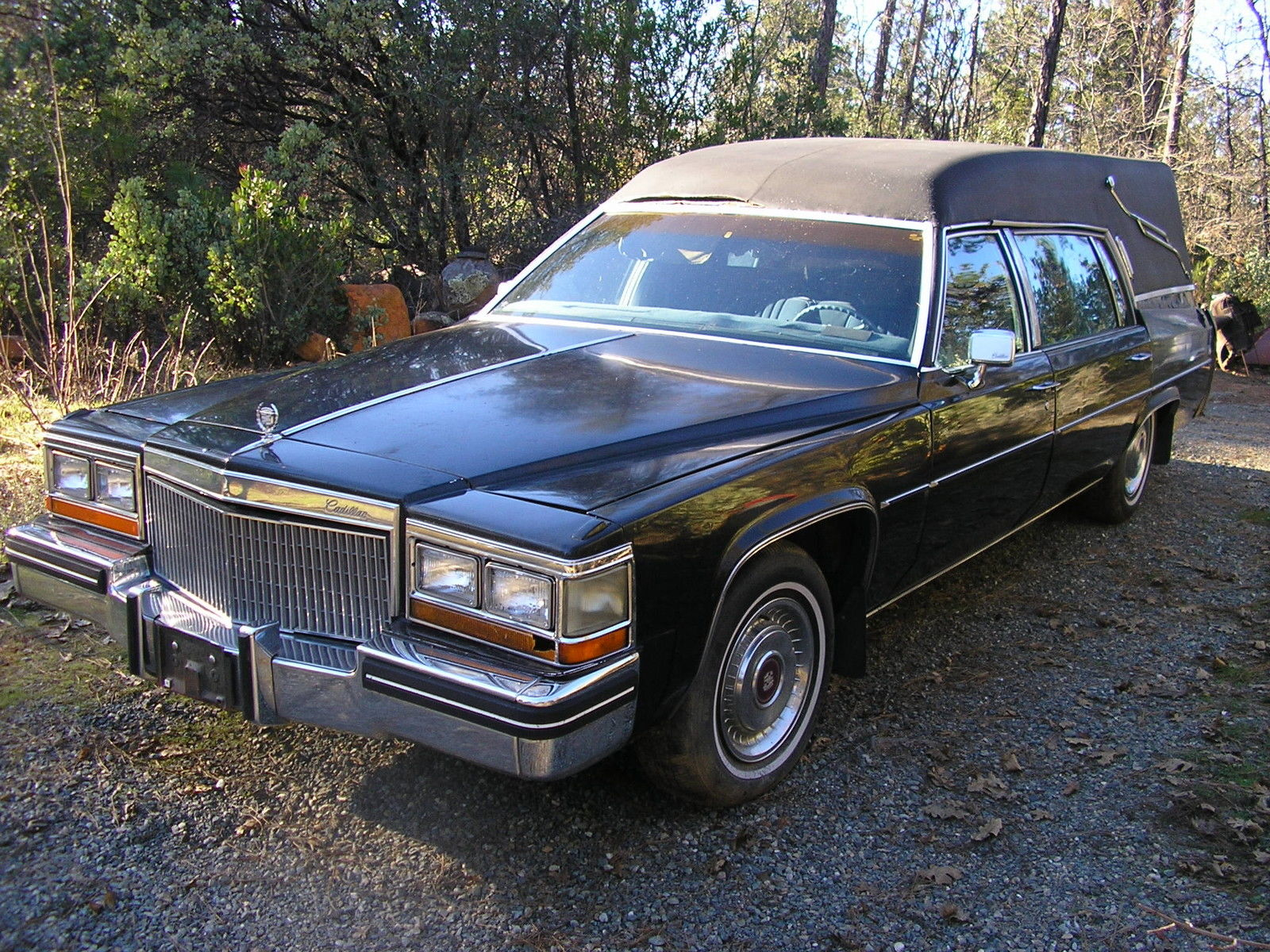 1982 Cadillac Hearse Superior Coach For Sale